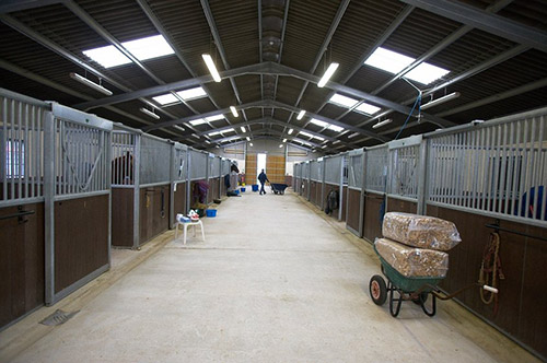 HOSPITALISATION & FOAL INTENSIVE CARE